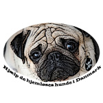 Hjælp til de hjemløses hunde i Danmark