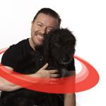 WSPA Halsbånd redder liv